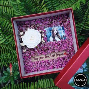 กล่องดอกไม้ P6-SoR