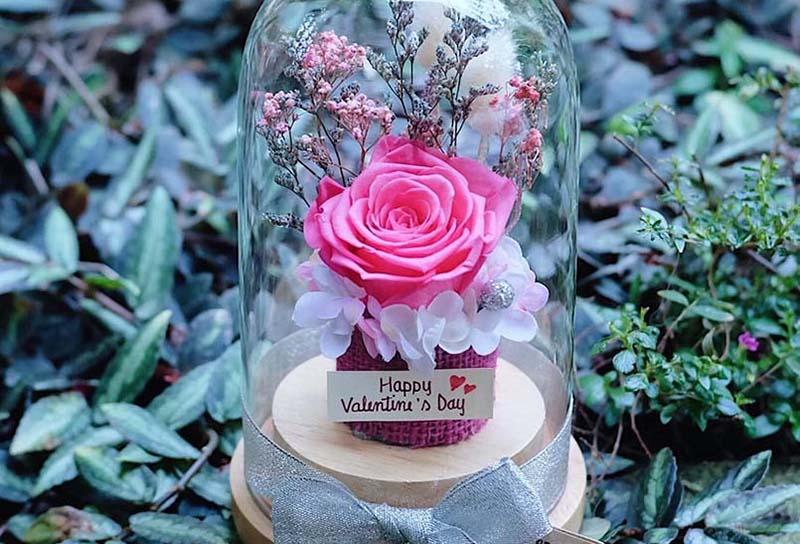 ความหมายดอกุหลาบสีชมพู หมายถึง ความรักหวานโรแมนติก
